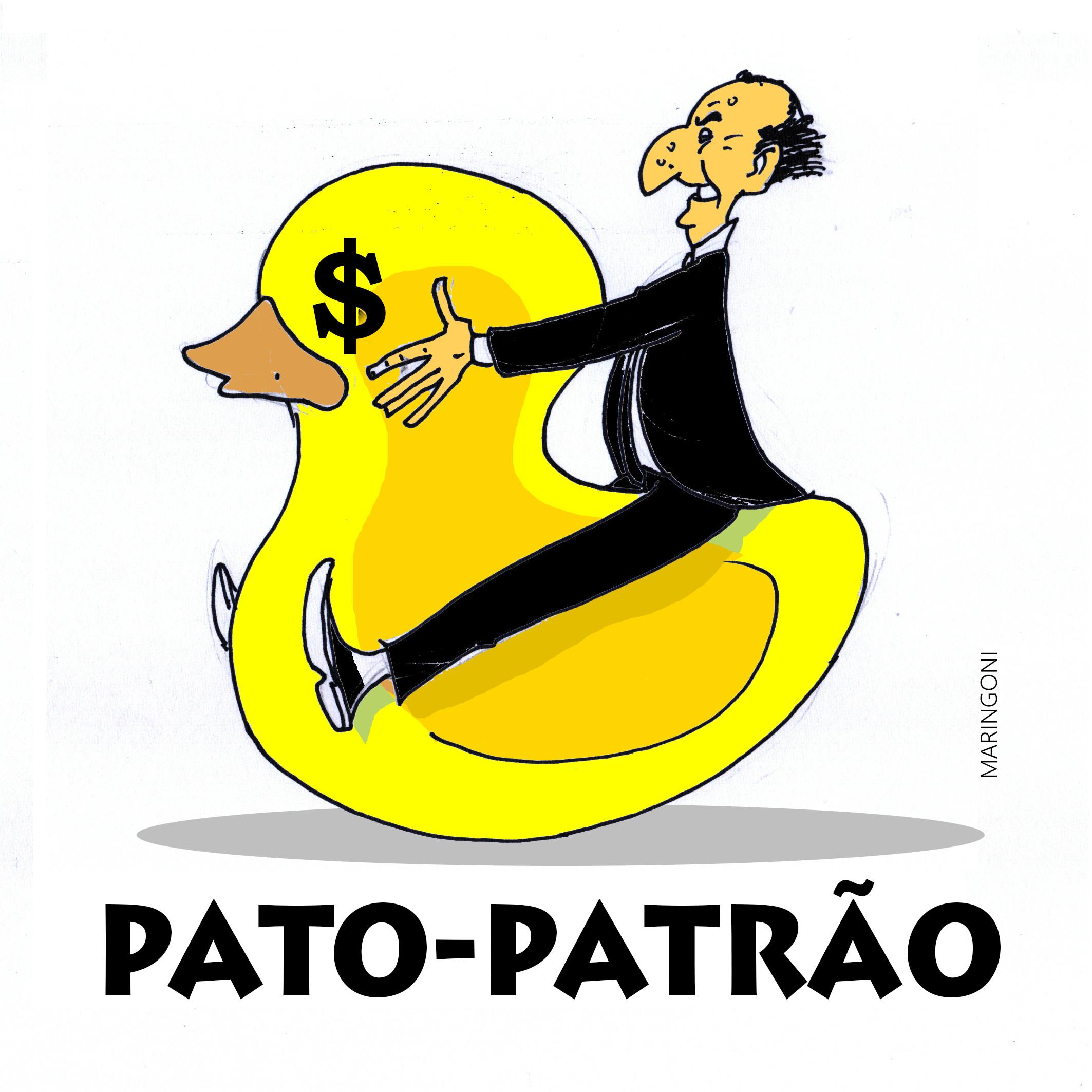 Pato 1_3